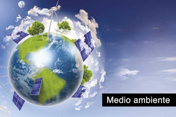 Nuevos decretos promueven mayor tutela del ambiente