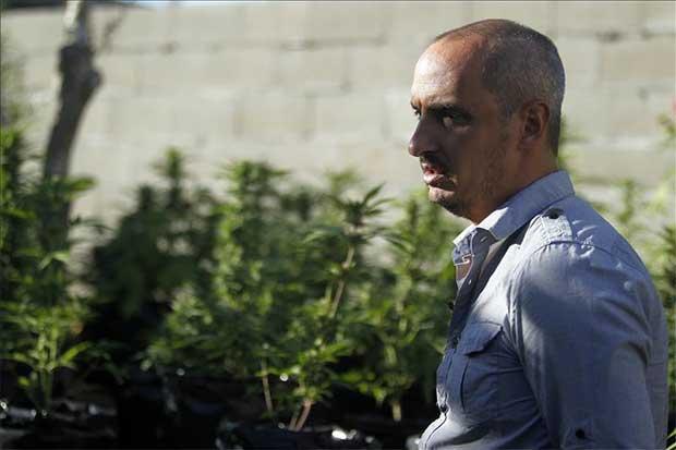 """""""Regular la marihuana medicinal ayudaría a romper estigmas morales"""""""