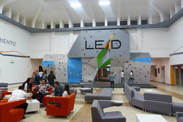 Universidad Lead incluirá cinco carreras para el 2017