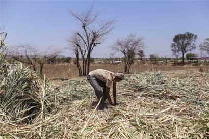 ONU recurriría a geoingeniería para mitigar cambio climático