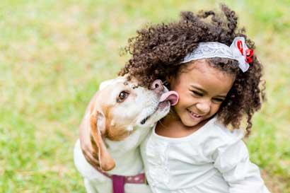 Diez escuelas recibirán gira sobre comportamiento canino