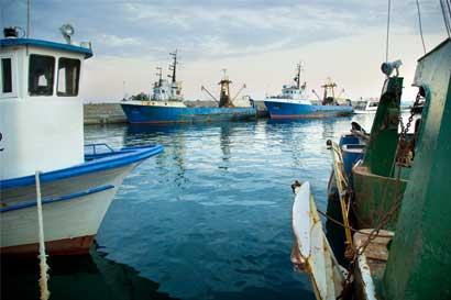 País busca mejoras en la pesca de atún con nuevo convenio