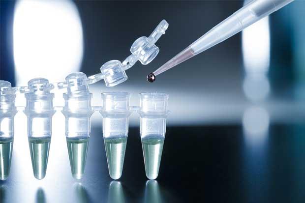 Ministerio de Salud estandariza criterios para terapias con células madres