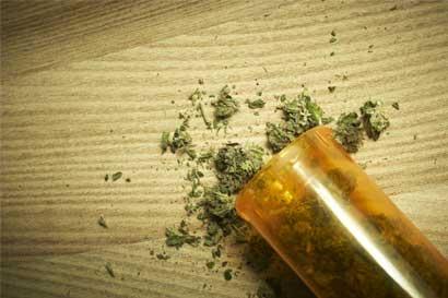 División entre grupos pro marihuana traba proyecto en la Asamblea