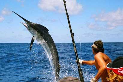 Fecop busca consolidar pesca turística-deportiva
