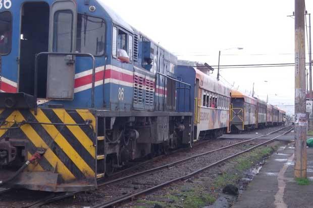 Servicio de tren se brindará con normalidad hasta el sábado