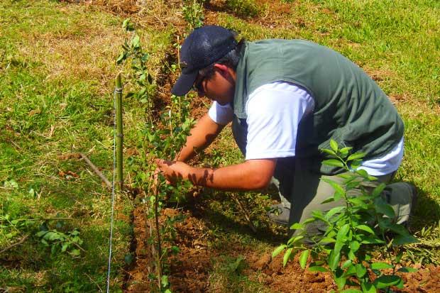 Cartago tendrá laboratorio contra degradación de suelos