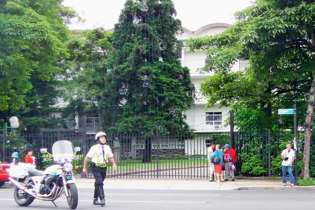 Paseo Colón tendrá paso regulado por iluminación de árbol de Hospital de Niños