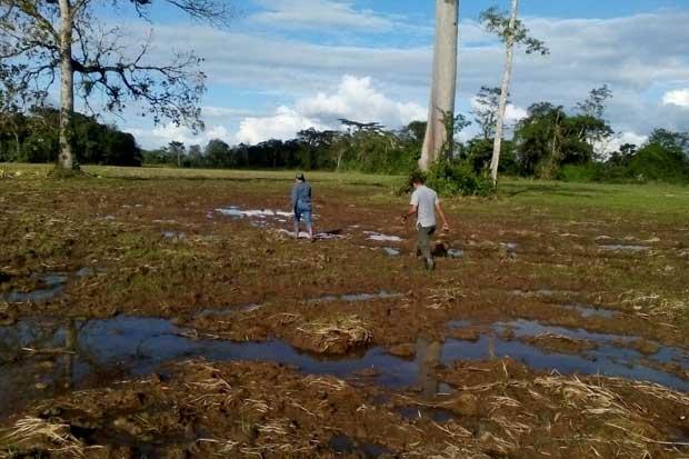 Gobierno empieza a medir impacto de Otto en agro