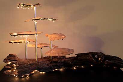 Galería Nacional se llena de luz