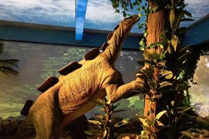 Dinoworld donará taquilla de hoy a organización de bien social