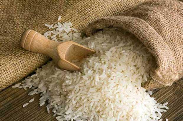 Productores aseguran recibo de arroz de 2016
