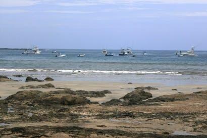 Playa Tamarindo optará por Bandera Azul Ecológica