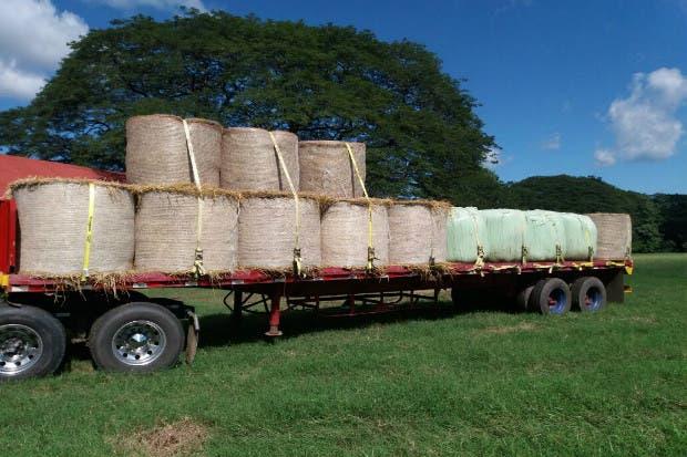 Insumos fortalecerían la producción agropecuaria tras el paso de huracán Otto
