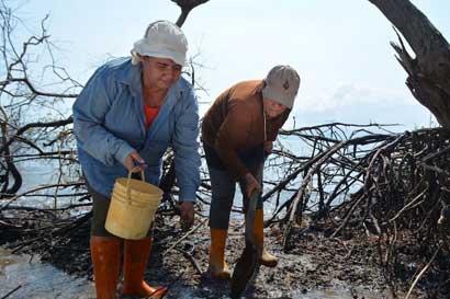 Acciones del país en género de pesquería fue reconocido internacionalmente