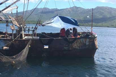 Ambientalistas denuncian insistencia de Gobierno por reinstaurar pesca de arrastre