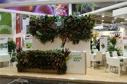 Plantas ornamentales ticas se promocionan en Alemania