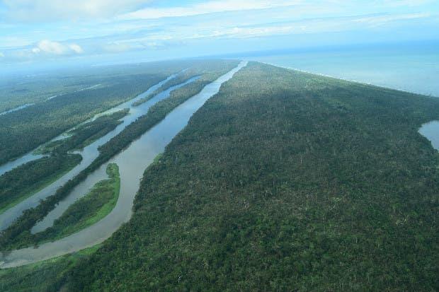 Reparación en áreas silvestres afectadas por Otto supera los ¢2 mil millones