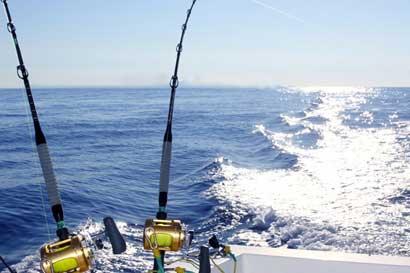 Quepos Billfish Cup 2017 reunirá 20 embarcaciones