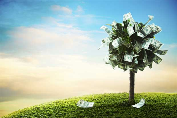 Sector agrícola es el principal generador de dólares para Costa Rica