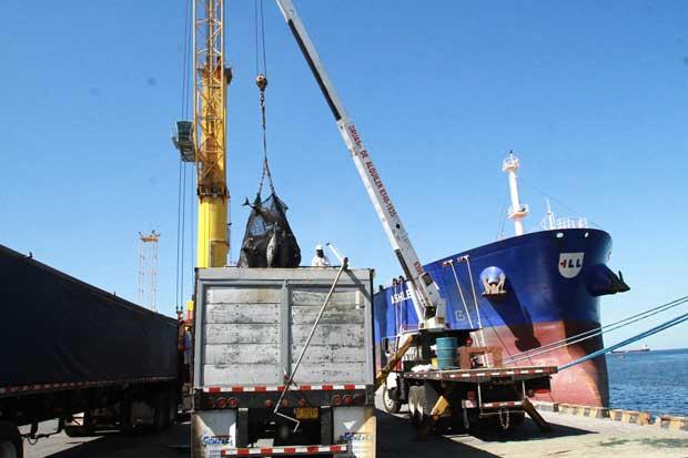 Personas dedicadas a actividades marítimas tendrán certificación y oportunidad de 50 mil empleos