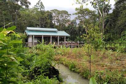 Mejoramiento en obras en Parque Nacional Cahuita incentiva visitación de turistas