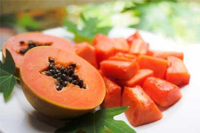 Productores de Guácimo exportan papaya hacia Canadá y España