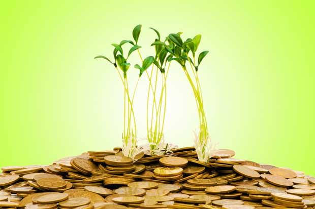 Ministerio de Trabajo destinará ¢4 mil millones para microempresarios
