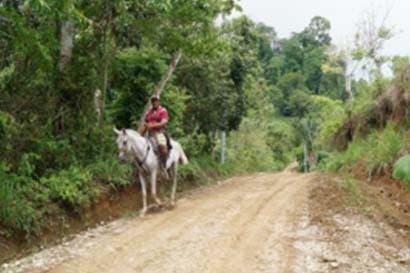 Autoridades iniciarán intervención de caminos en comunidades indígenas al sur del país
