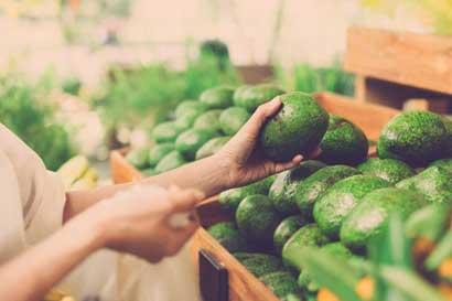 Nueva app del ICE apoyará agricultores orgánicos