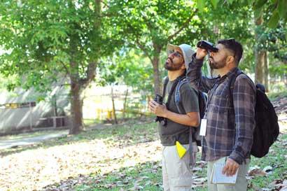 Expertos identificarán biodiversidad de La Sabana