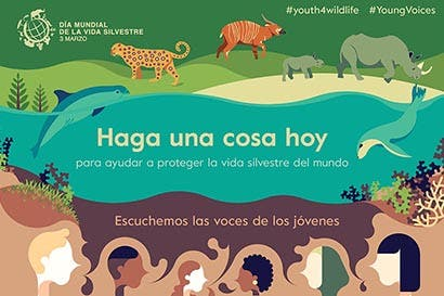 Hoy se celebra el Día Mundial de la Vida Silvestre