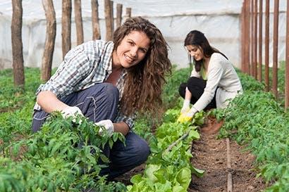 Las mujeres son clave para aumentar la productividad agrícola, según la FAO