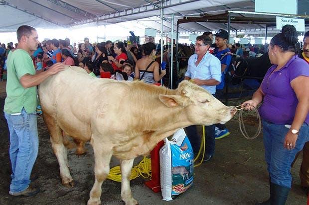 Feria Agrícola y Pecuaria le esperará en Coronado