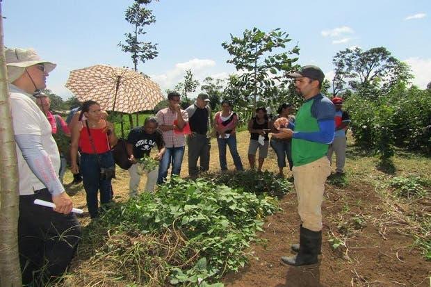 Madera gourmet beneficia a productores de la zona norte