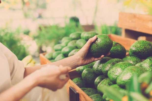 Costa Rica contrata asesoría de la OMC por el caso de importación de aguacate mexicano