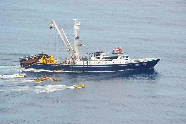 "Estudio sugiere que Costa Rica ""regala"" su riqueza atunera a barcos extranjeros"