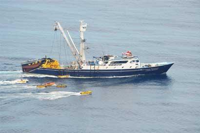 Estudio sugiere que Costa Rica regala su riqueza atunera a barcos extranjeros