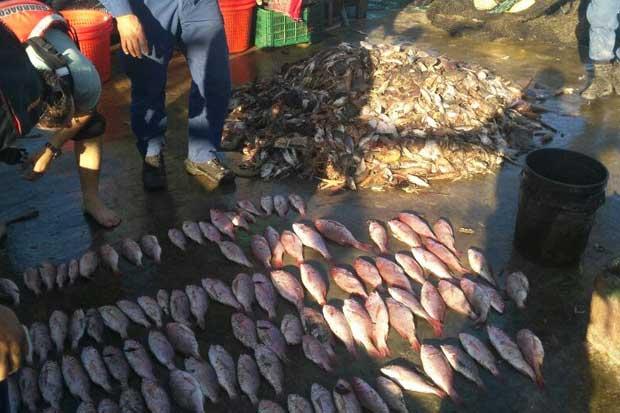Barco camaronero capturado en área protegida podría volver a pescar, según MarViva
