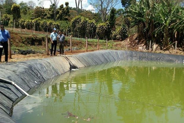 Senara  invierte ¢26 millones en sistema de riego para productores de Puriscal