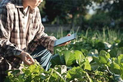 FAO ofrece curso gratuito de agricultura familiar
