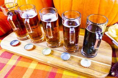 Municipalidad pretende prevenir consumo de alcohol a través de campamentos