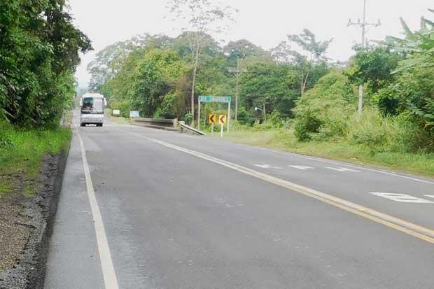 Inspeccionarán puentes de ruta 32