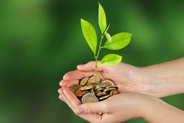 Costa Rica presentará proyectos encaminados a ser carbono neutral