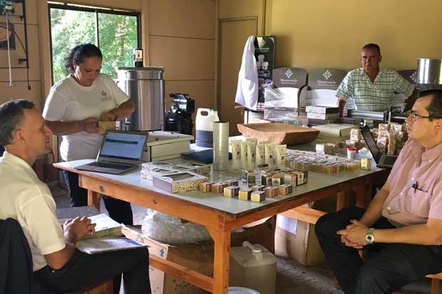 Productores de papaya y miel buscan competir con innovación