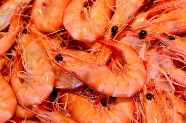 Mayoría de pescaderías incumple con etiquetado e información de precios, según MEIC
