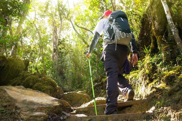 Área de Conservación Guanacaste insta a turistas a visitar estos seis sectores