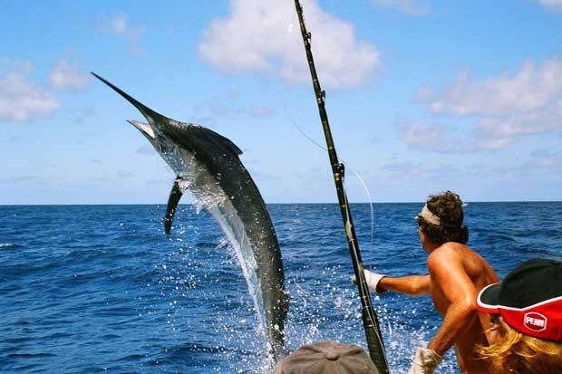 Competición de pesca deportiva será en Quepos