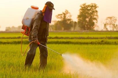 Países de América Latina, Norteamérica y Asia analizan reglamentación de plaguicidas
