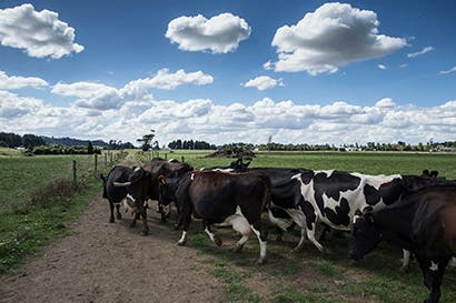 En reto a Trump, Canadá mantendrá protecciones a sector lácteo
